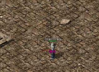 《网通传奇》新区的玩家应该准备哪些资料